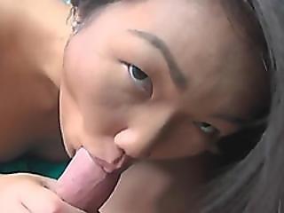 Asian Girlfriend Blowjob Doggy Style Brunette