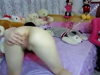 Webcam 15021503