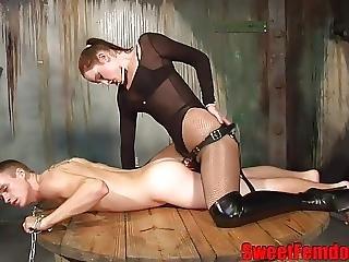 domina strapon thai massage aalborg vesterbro