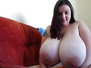 Fat Natural Titties