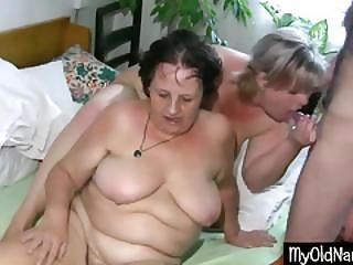 Pussy Lover Lick Them All