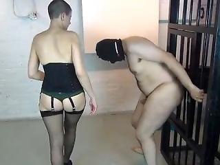 Sexy Mistress Cbt
