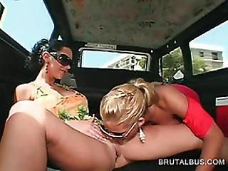 Amateur Chicks Dildo Fucking Pussies In The Bus