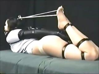 Hogtie With Armbiner