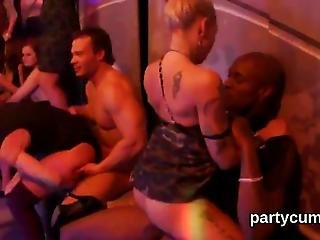 Completely Insane Fervid Girls Reveal Natural Bigtits At Hardcore Party And Get Poked By Random Fellows