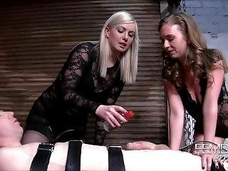 Mistress Lexi Needs A Dna Sample