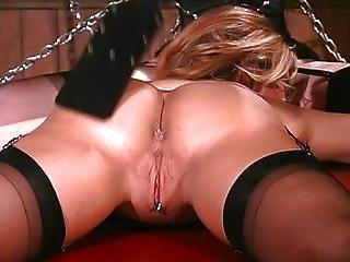 Have some fun with my slaves