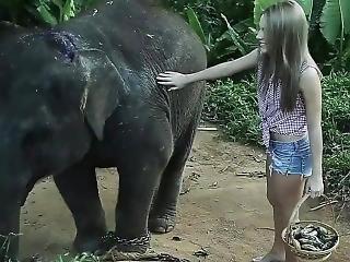Video#2 Thailand Tatiana Georgieva
