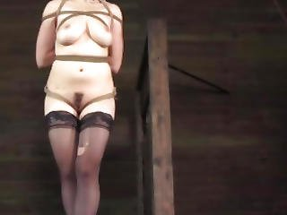Suspended Boxtied Sub Toyed