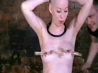 Kumimonsters Asian Bondage In Feather And Tar Humiliation Of Bald Japanese Bdsm Babe