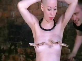 asiatique, bonasse, bdsm, bondage, humiliation, japonaise, fouet