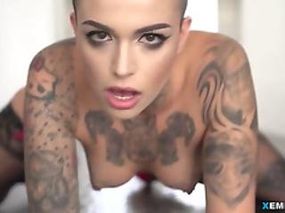 Tattooed Whore In Stockings Gets Nailed