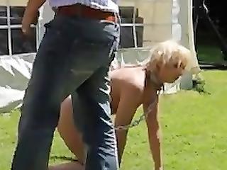 Cmnf - Slave Training