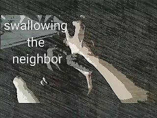Swallowing The Neighbor