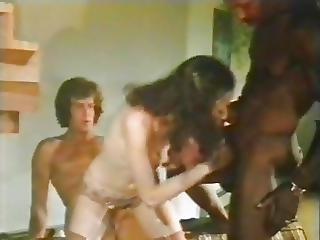 Swedish Erotica 5 10 11 Usa-1979-80