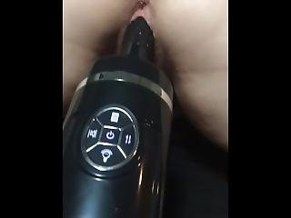 Doggie Style Toy Play