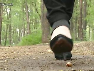 17 Trample Snail In Park