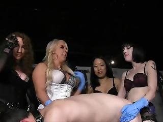 anal, bondage, femdom, gangbang, strap on, brinquedos