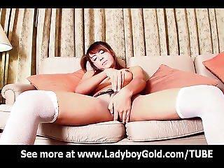 Ladyboy Somoo Busty Pigtail Dickgirl