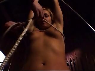 Bdsm, Horse, Torture