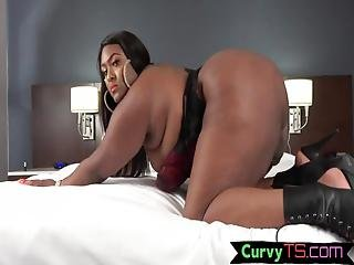 Shemale,trans,tgirl,bbw,fat,chubby,thicc,ssbbw,transsexual,ts,ass,masturbation,lingerie,ebony,cumshot, Shemale, Booty Shaking Ebony Shemale Strokes Her Cock