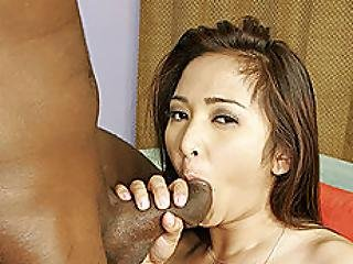 Stacked Oriental Playgirl Wants Negro Knob