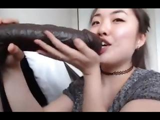 Asian Sucks Gigantic Monster Cock... Real Or Fake!!!! Must Watch!!!!