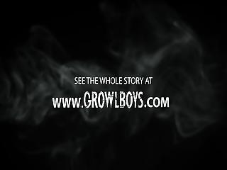 Growlboys - Monster Bareback Inseminates Boy Cub With Big Black Cock