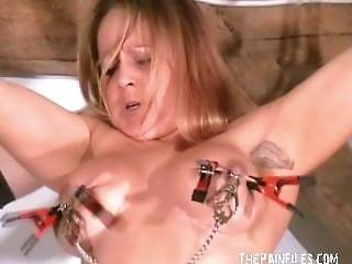 Busty Tit Torture Of Tied Milf Gina In Extreme Bdsm And Nipple Clamped