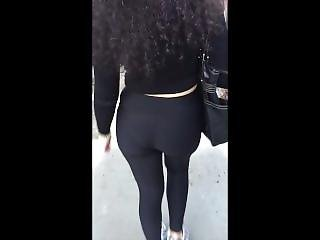 Puerto Rican Shoty Walking With A Phatty