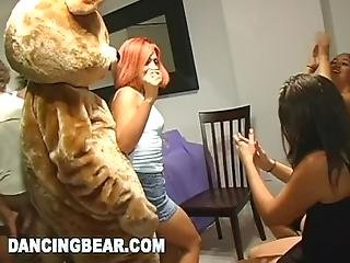 Dancing Bear   Girls Going Wild At This Crazy Cfnm House Party