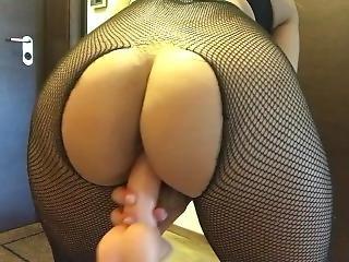 amatör, röv, stor röv, brasiliansk, full, knullar, onani, slyna, webcam