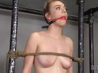 Fixed Molly Mae - Dungeoncorp Bdsm - A Perfect Submissive