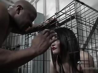 Caged Gabriella Paltrova Sloppy Bbc Blowjob