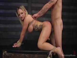 babe, blond, bondage, numse, deepthroat, dominerende, tattovering