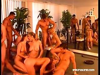 Orgy In The Gym
