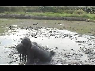 Filipina Mud Fight