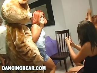bjørn, stor kukk, cfnm, gæærn, dansing, kukk, morsomt, hus, orgy, fest, vill