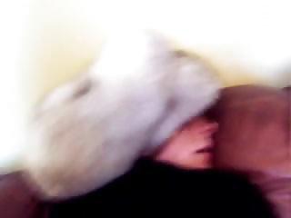 любитель, задница, задница ебать, чертов, мех, шляпа, белый