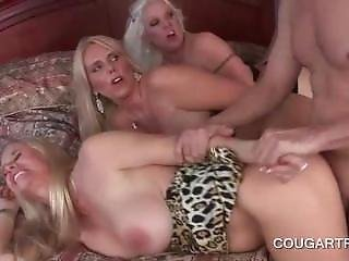 4some, Cunt, Doggystyle, Gangbang, Hardcore, Milf