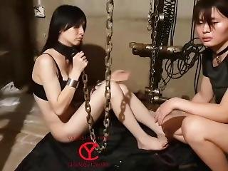 Full Collection Of 20 Days Of Asian Bdsm 1