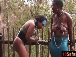 Fat Ebony Sluts Get Spanked Hard Before They Suck Dick