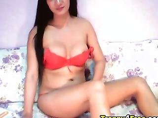 Gorgeous Shemale Jerks Off On Cam