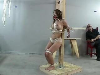 Predicament Bondage King And Queen