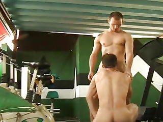 Muscular Latino Gays Bareback Sex In Gym