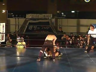 Japanese Mixed Pro Wrestling