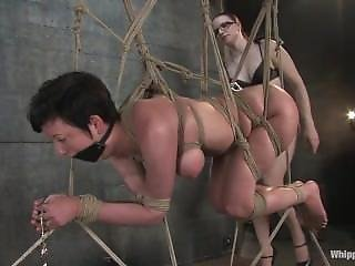 Cherry Torn Tortured By Claire Adams