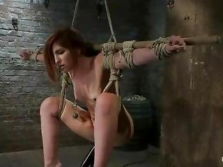 Lexi Brooks Tied And Vibed