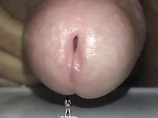 Shrunken Woman Crushed By Giant Cock