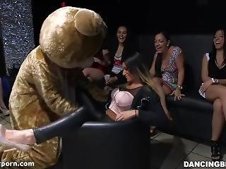 Dancing Bear - Make Those Panties Wet